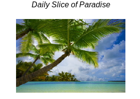 Daily Slice of Paradise